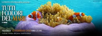 Tutti i colori del mare - Sermide 12/02/2016